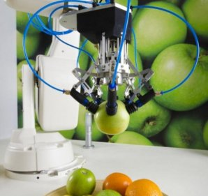 Fruit-picking Robot Solves Automation Challenge